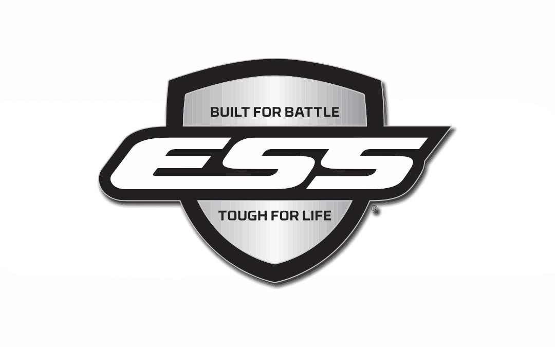 Read more about the article ESS