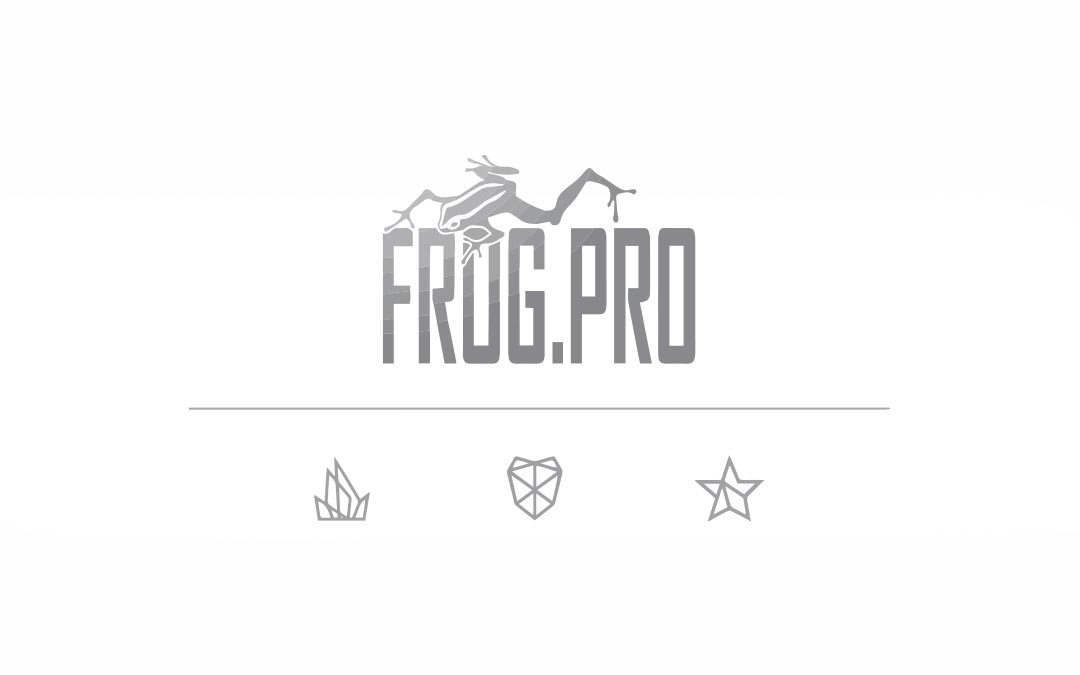 Read more about the article Frog.Pro